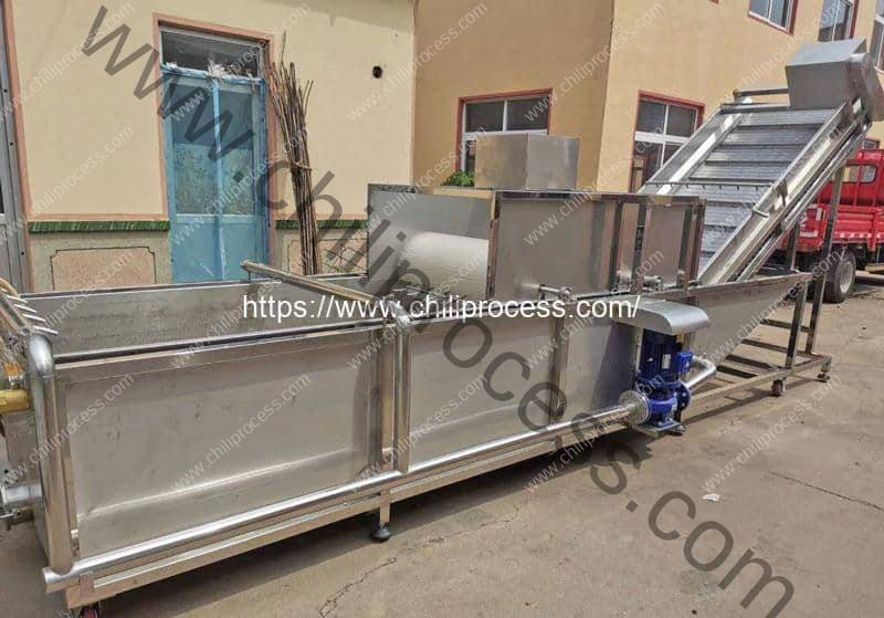 Automatic Chili Water Washing Machine Delivery for Mexico Customer